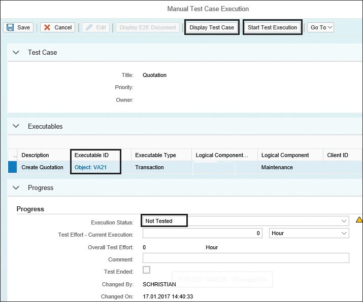 SAP Solution Manager Display Test Case