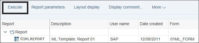 Execute SAP Drilldown Report