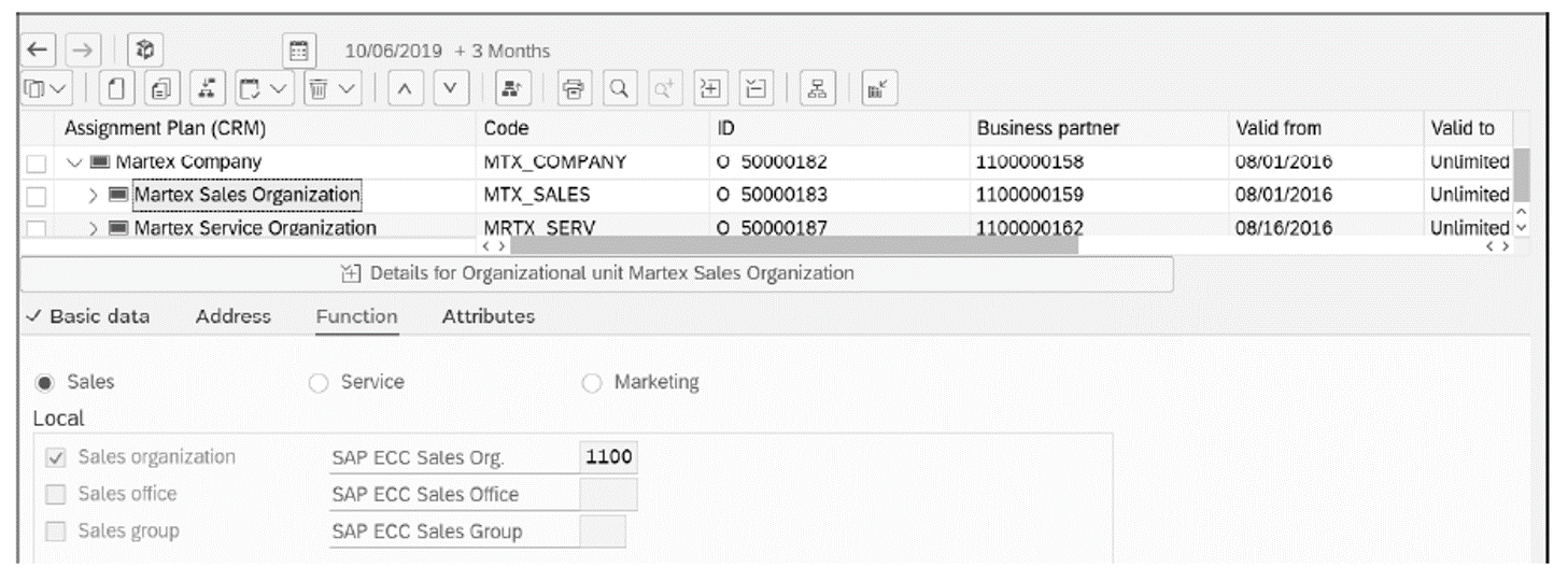 Martex Sales Organization with SAP ERP Sales Org Assignment