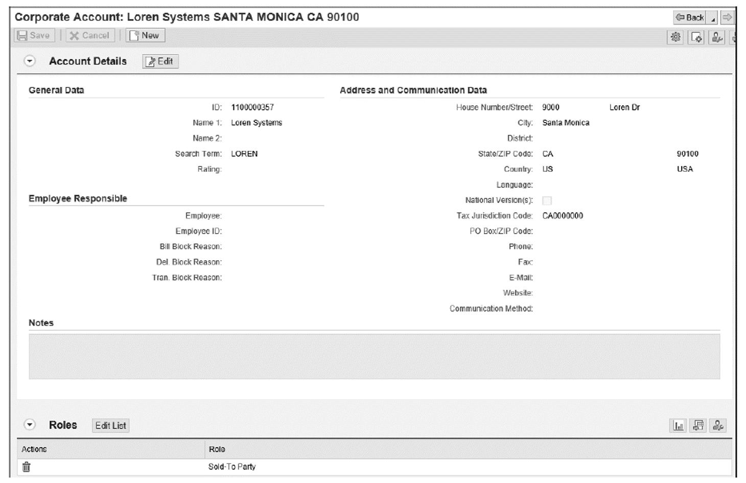 Business Partner Details: Loren Systems, Screen 1