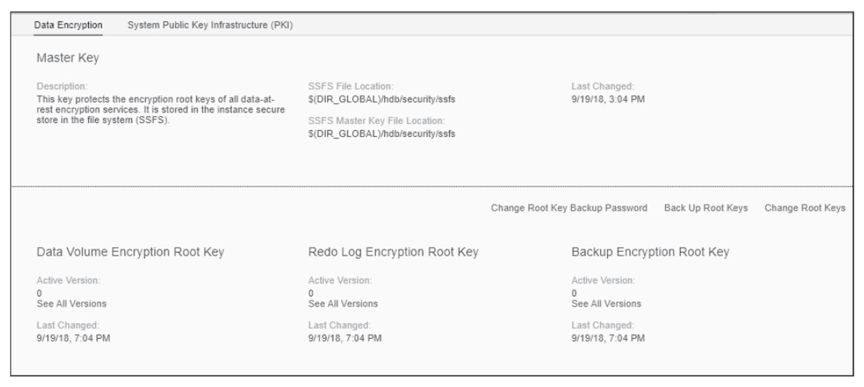 SAP HANA Cockpit Interface for Manage SSFS Keys