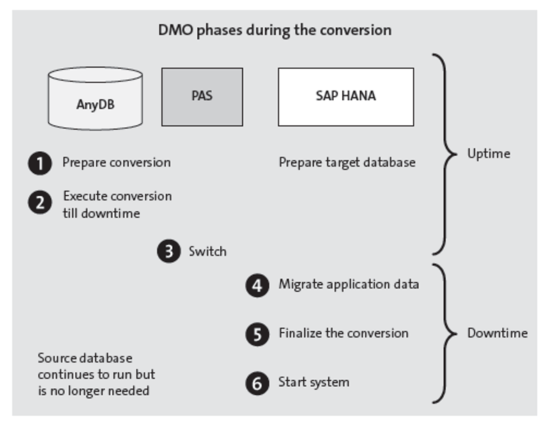 DMO Phases during Conversion