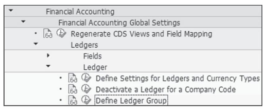 Customizing the Ledger Group