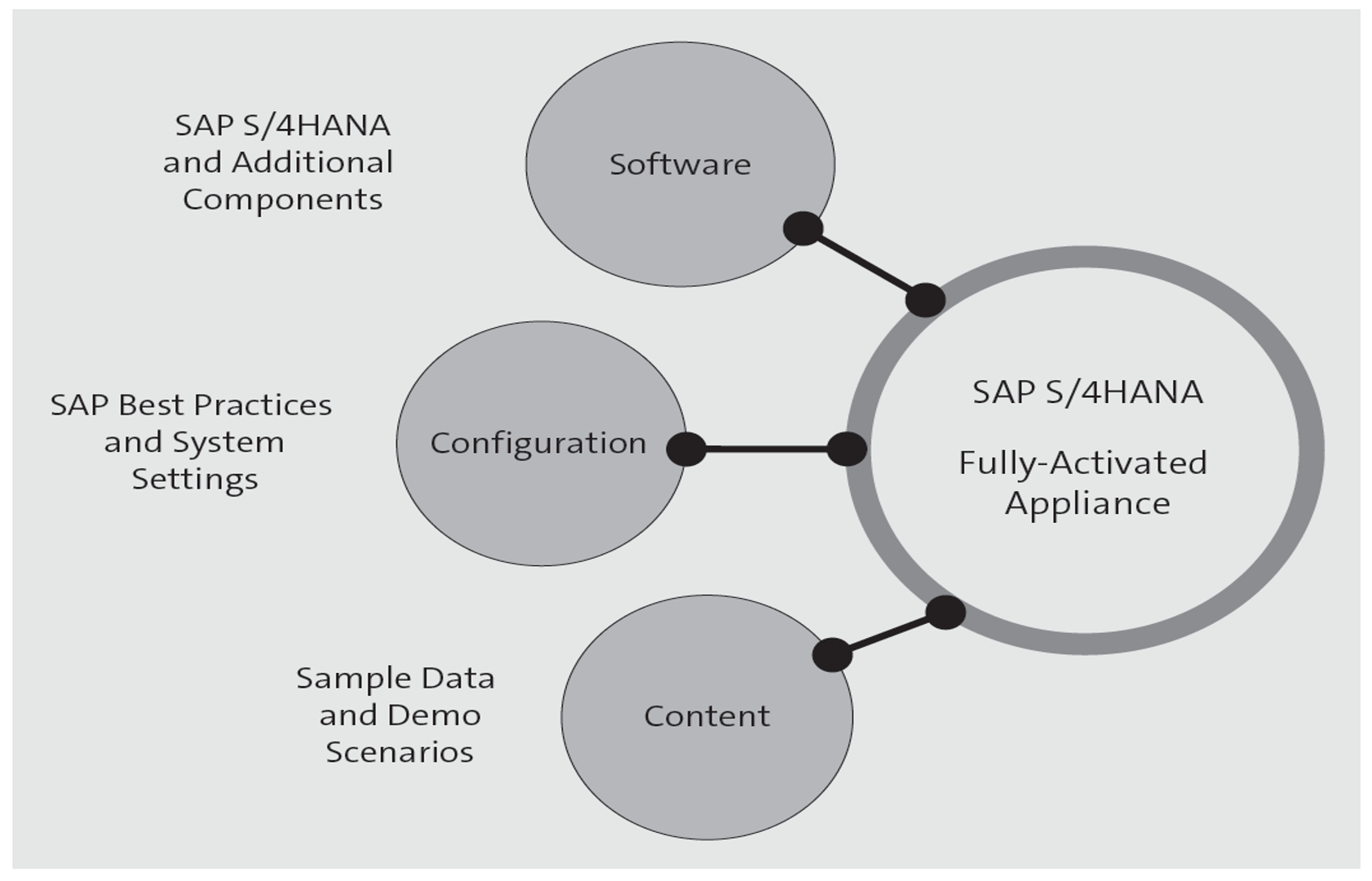 SAP S/4HANA Fully Activated Appliance Concept