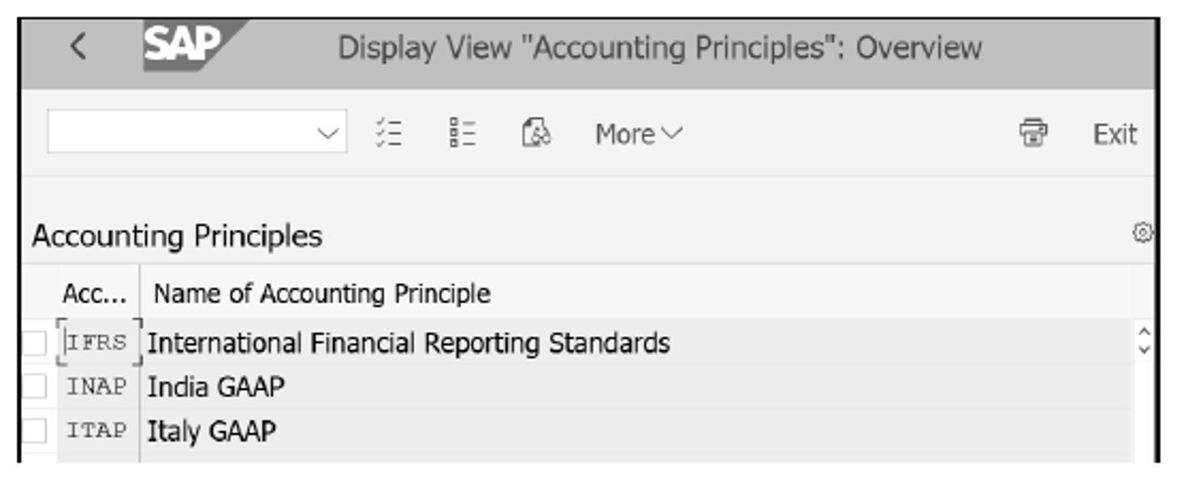 Definition of Accounting Principles in IMG