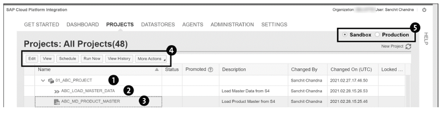 SAP Cloud Integration for Data Services: Example Project, Process, and Task