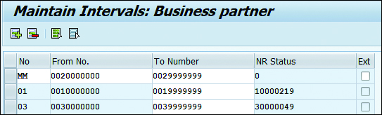 Maintain Intervals: Business Partner